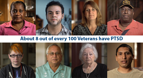 About 8 out of every 100 veterans have PTSD