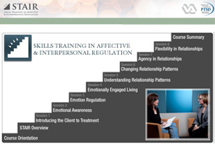 Skills Training in Affective and Interpersonal Regulation (STAIR)