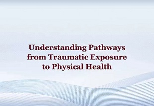 Understanding Pathways from Traumatic Exposure to Physical Health